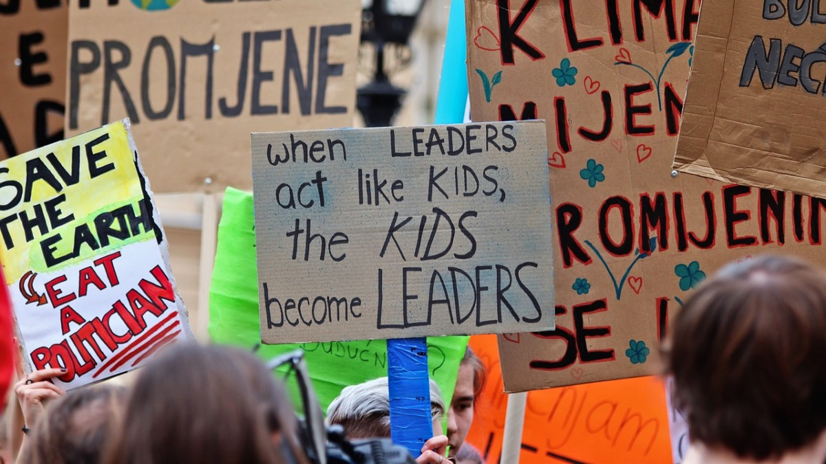 Youth striking for climate, a crowd with signs