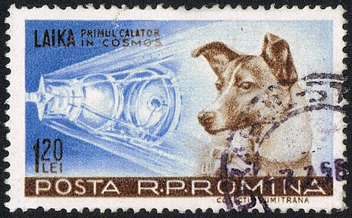 Russian cosmonaut dog Laika on Romanian stamp