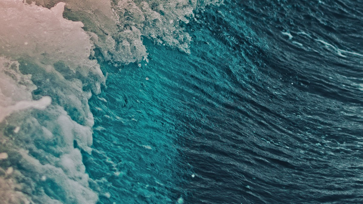 A blue, green ocean wave with white foam on the crest