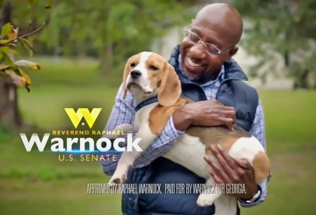 The Warnock Beagle Dog